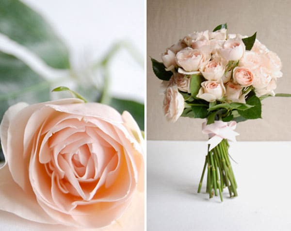 photo-de-bouquet-de-roses-pale