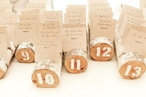 plan-de-table-nature-tronc-d-arbre-escort-card