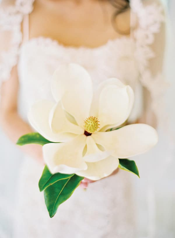3.bouquet-de-printemps-blanc-magnolia