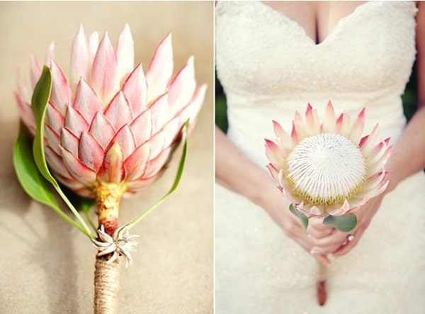 9.bouquet-mariee-simple-protea
